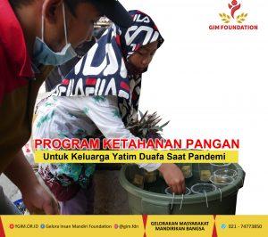 Program-Mandiri-Ketahanan-Pangan-Saat-Pandemi